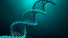美しいDNAのラセン構造